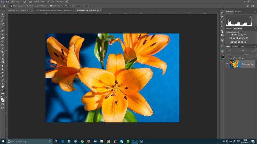 photoshop flowers